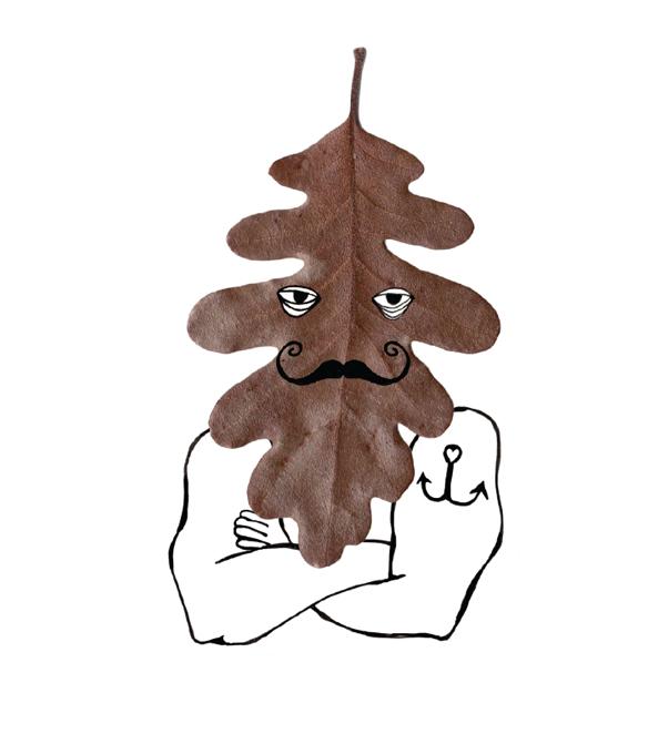 Mr.Leaf