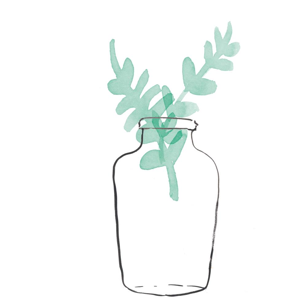 flow_plant2