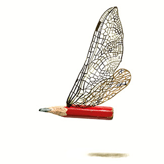 dragonfly_pencil_square_claudi