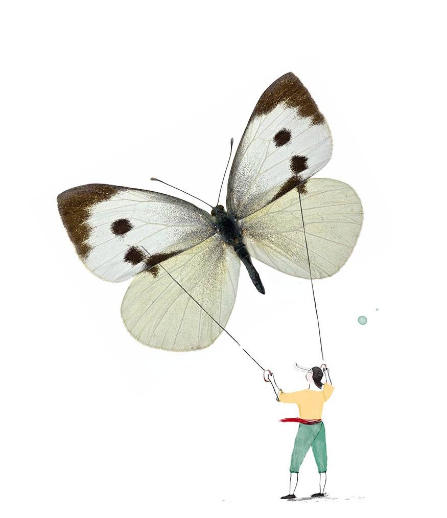 butterflying2